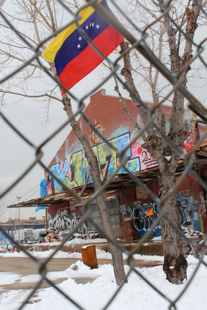 Venezuelan flag flies the day after their President, Hugo Chavez, passed. Graffiti, Chicago.