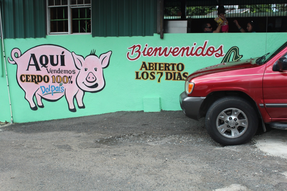 100% certified pigs from this island! Lechonera Los Pinos, Guavate, Cayey, Puerto Rico